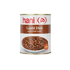 کنسرو خوراک عدسی هانی 380 گرمی