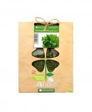 سبزی پلویی آریا 100 گرمی