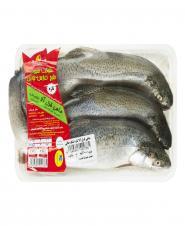 ماهی قزل آلا شکم خالی  تازه  1 کیلویی شیلات خلیج فارسنوین