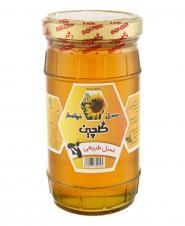 عسل بدون موم 800 گرمی گلچین